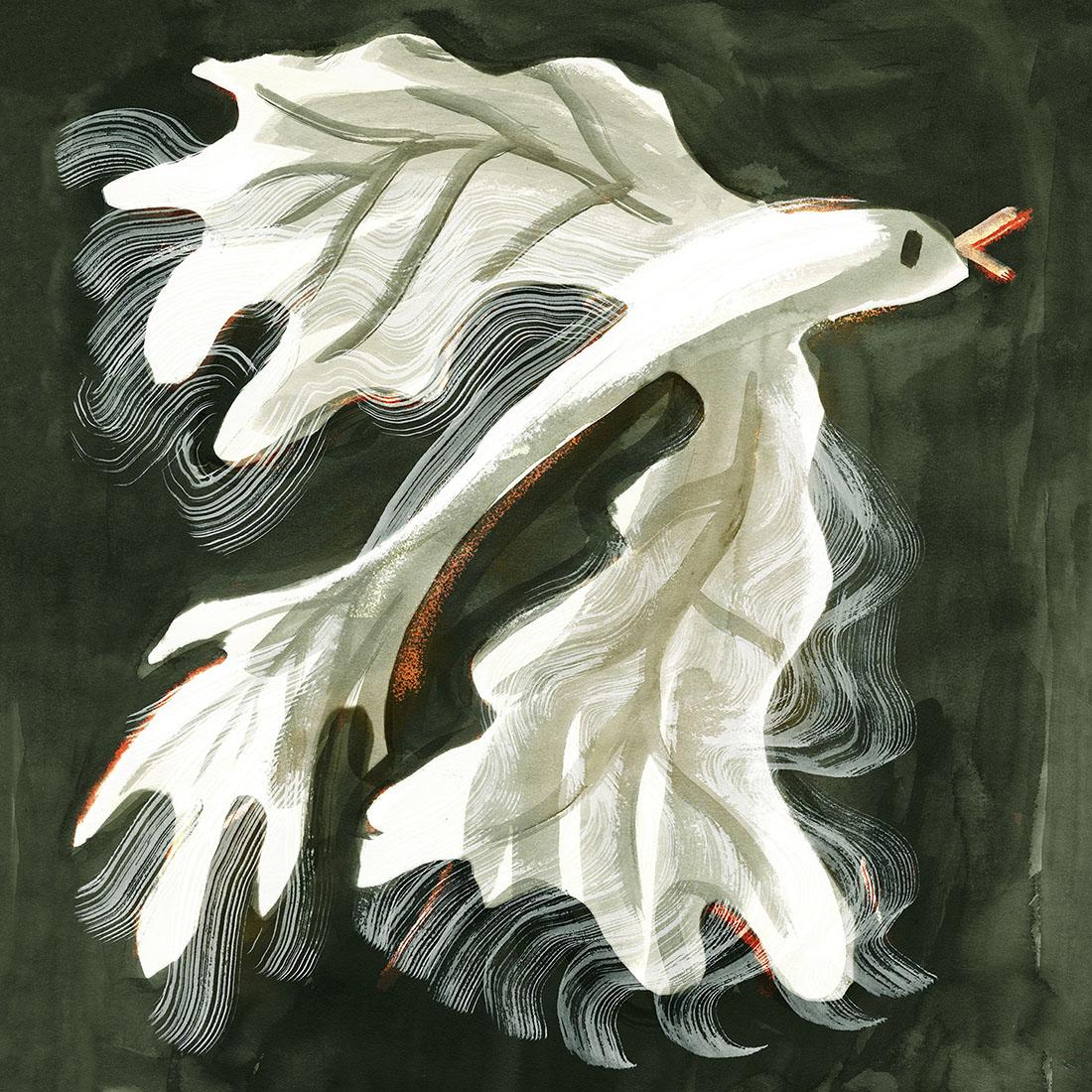 De Groene Eeuw – Illustration by Pyhai